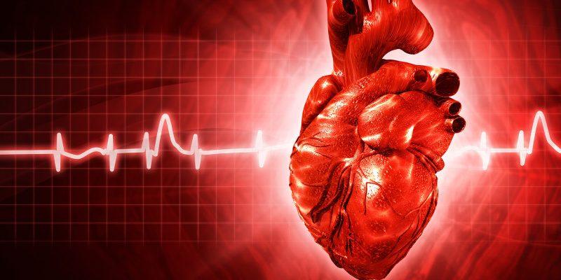 3 badania serca, na które możesz dostać skierowanie